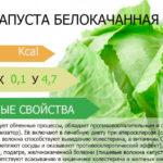 Чем полезна капуста для организма?