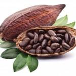 Удивительно полезный шоколад из какао-бобов
