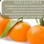 Полезные свойства мандаринов для организма