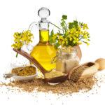 Удивительно полезное льняное масло