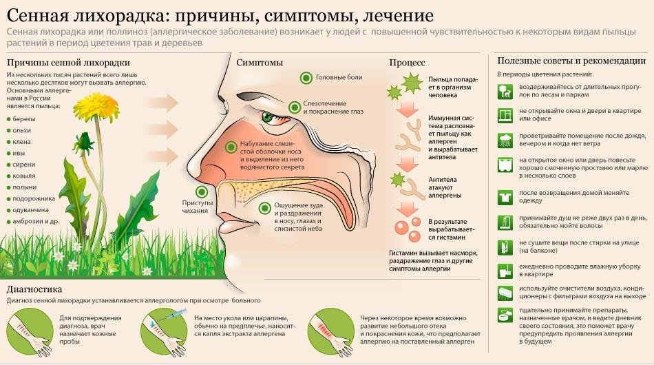 Причины аллергии